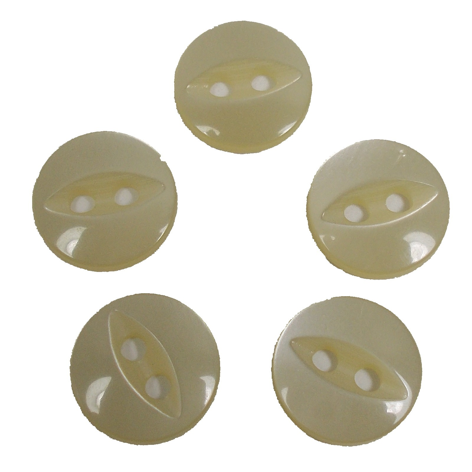 Fisheye Basic Buttons 11mm Ivory Pack of 5