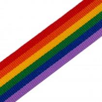 Rainbow Pride Grosgrain Ribbon 10mm wide 1 metre length
